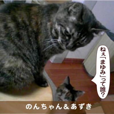 20170925_touko