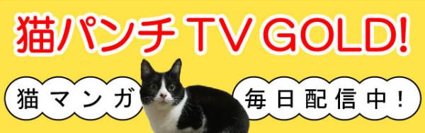 CAT_site-01